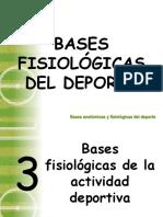 Bases Fisiológicas Del Deporte.