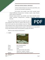 Ciri Optis Kelompok Mineral Piroksen
