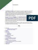 Metadatos en La Seguridad Informatica Mi.08.11.17