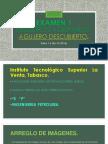 Examen 1 Teresita Torruco