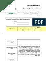 Matriz de Valoración - EA (Capacidades Actitudinales)