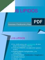 Lípidos 1 (1)