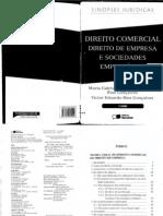 Sinopses Jurídicas Direito Comercial, Direito de Empresa e Sociedades - Maria Gabriela Venturoti Perrota Rios Goncalves & Victor Eduardo Rios Goncalves (2009)