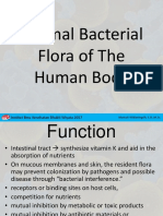 2. Flora Normal Dalam Tubuh