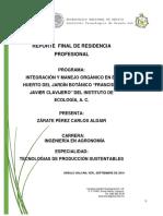 Reporte Final Residencia Profesional
