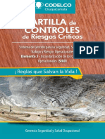 LIBRO CONTROLES CRÍTICOS 21 CH mar2017.pdf