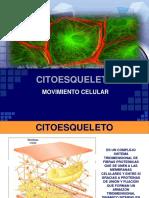 3.1 Matriz Citoplasma_tica y Citoesqueleto