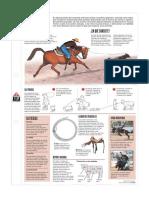 5ª El Rodeo_Textos Discontinuos Jpg