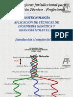 1-Introducción Al Estudio Del DNA