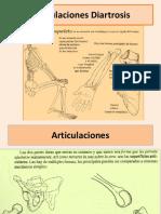 Anatomia.clase3.IDES.2012