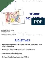 TEJIDO-CONECTIVO