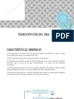 Transcripción Del Dna