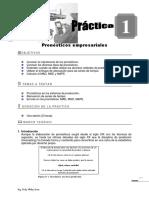 Microsoft Word - Guia de Pra