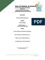 Practica 1 Columna de Winogradsky 170402192055
