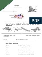 actividades 5 science