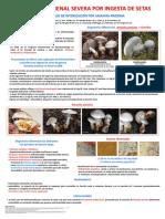 Amanita Proxima 09-2-2