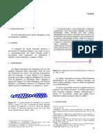 5Muscular.pdf