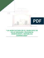 Agricultura en el Municipio de Villa Vásquez.doc
