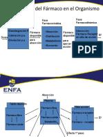 Procesos_del_Farmaco_en_el_Organismo (1).pdf