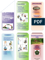 leafletdbd-130301023710-phpapp01-2