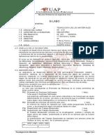 SILABO X.pdf