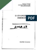 [T23] COUCH, Beatriz Melano. Novas visões....pdf