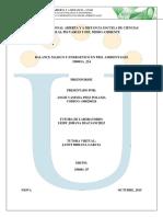 Preinforme_pdf