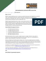 OutsourceCustomwebsitedevelopmentservicesbyWPDatLowCost