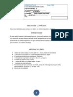 Formato Reporte P. Eletricas 1