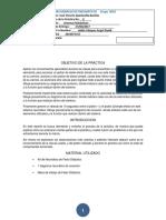 Formato Reporte Hidra(8)