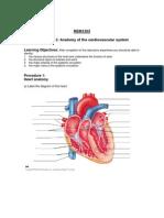 Bio Anatomy of Cardio System