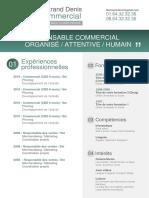 CV-Commercial_V3.docx