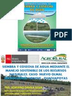 12.- CASO NUEVO OLMAL MICROCUENCA SONCHE - CHACHAPOYAS - ADRIANO DAVILA.pptx