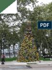 Roosevelt Isaland Holiday Lights