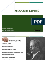 Mingazzini e Barre