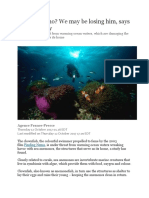 finding nemo article