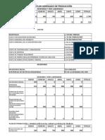 Plan Agregado de Produccion Trabajo de Campo2
