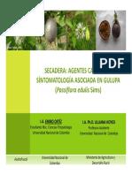 Fusariosis en Gulupa
