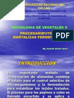 hortalizas fermentadas