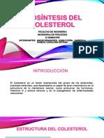 BIOSÍNTESIS DEL    COLESTEROL.pptx