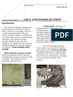 Lab6_Fossilization.pdf