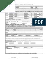 Formato N 04 Informe de Castigo de Creditos Mayores a 3 UIT