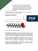 Los ácidos grasos saturados son aquellos con la cadena hidrocarbonada repleta de hidrógenos.docx