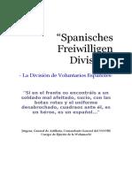 Division Azul La Historia