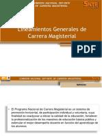 1 Lineamientos Generales 2011