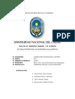 Informe de Glucogenolisis Uu12