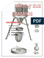 CALORIMETRIA+13%2C2013.pdf