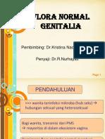Flora Normal Genitalia