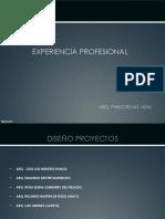 Expe Prof CV 2015.03.23.2015