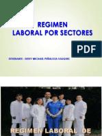 RLAA-RegimenLaboralporsectores